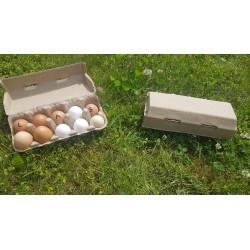 Opakowanie na 10 jaj -...