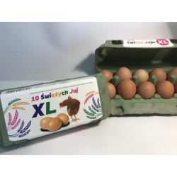 Świeże Jaja 10 XL Zielone -...