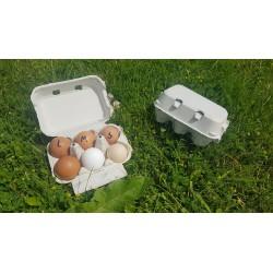PALETA Opakowanie na 6 jaj...